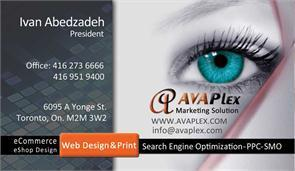 Avaplex Web Design Marketing Solution